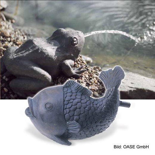 Vyvierač ryba