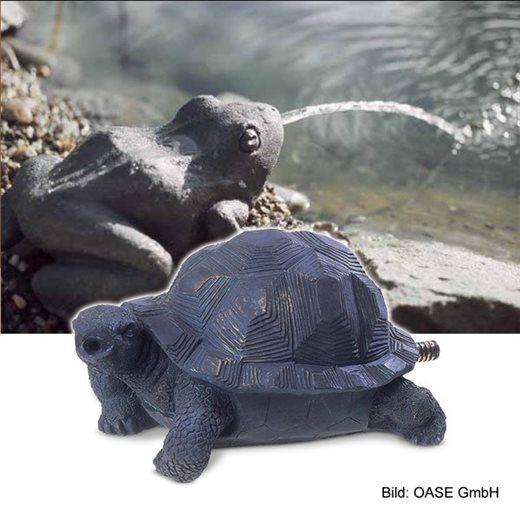 Vyvierač korytnačka
